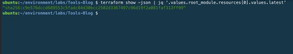 Terminal output from: terraform show -json | jq '.values.root_module.resources[0].values.latest'